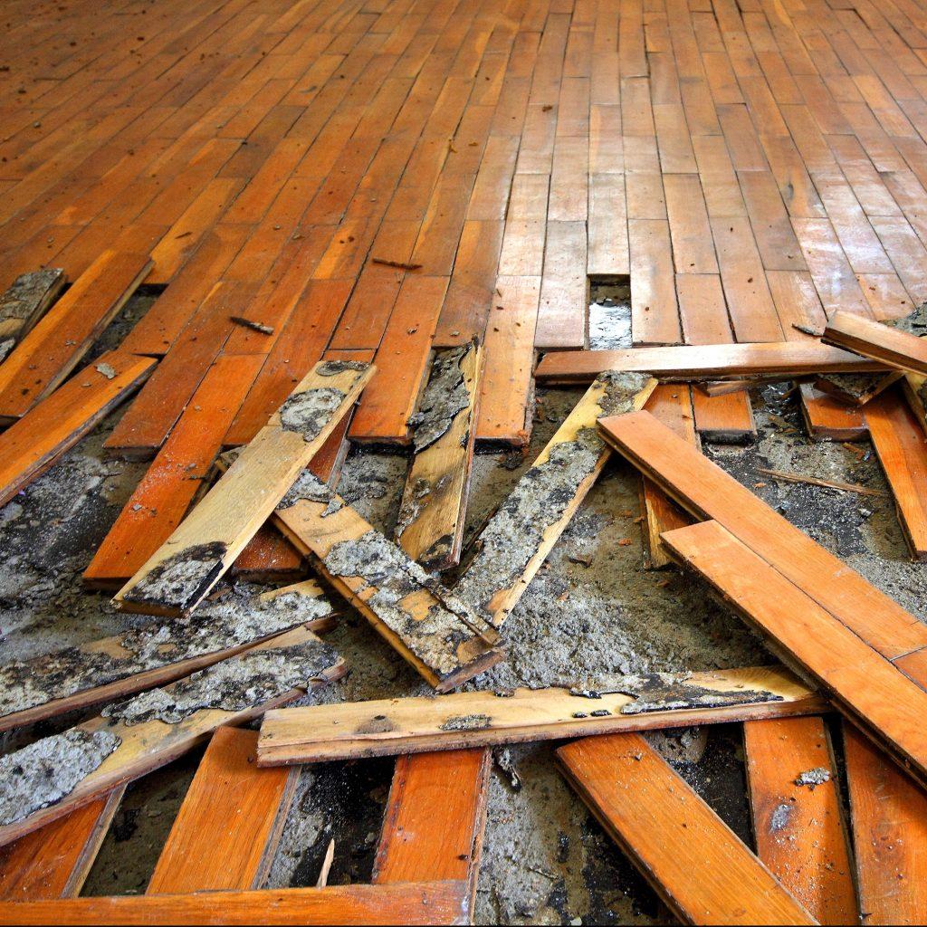 Torn Up Hardwood Floor