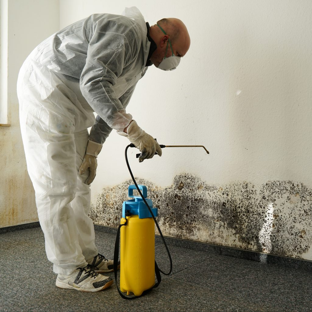 Employee Treating Mold